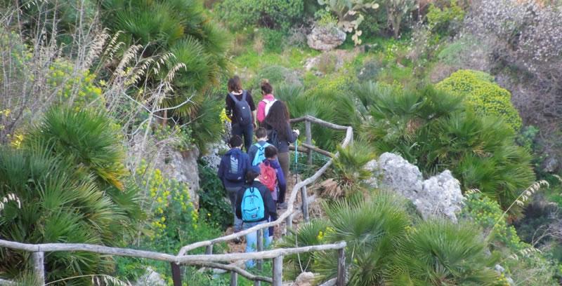 Trekking nella Riserva dello Zingaro